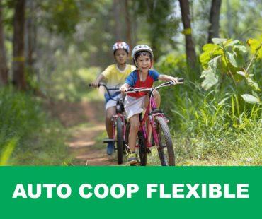 productos-Auto-Coop-Flexible